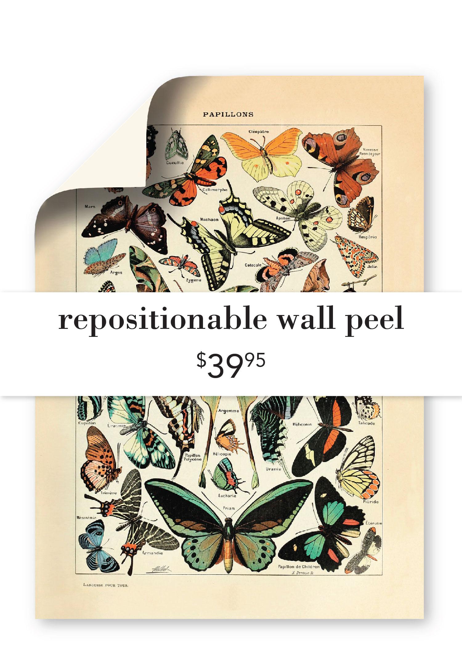 Repositional Wall Peel ($39.95)
