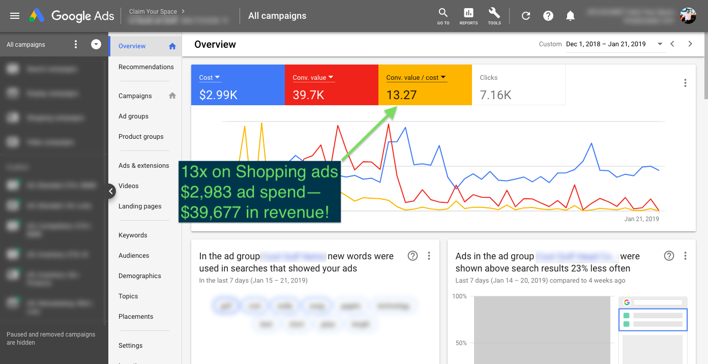 +13x on Google Shopping Ads Campaign—Oh My!