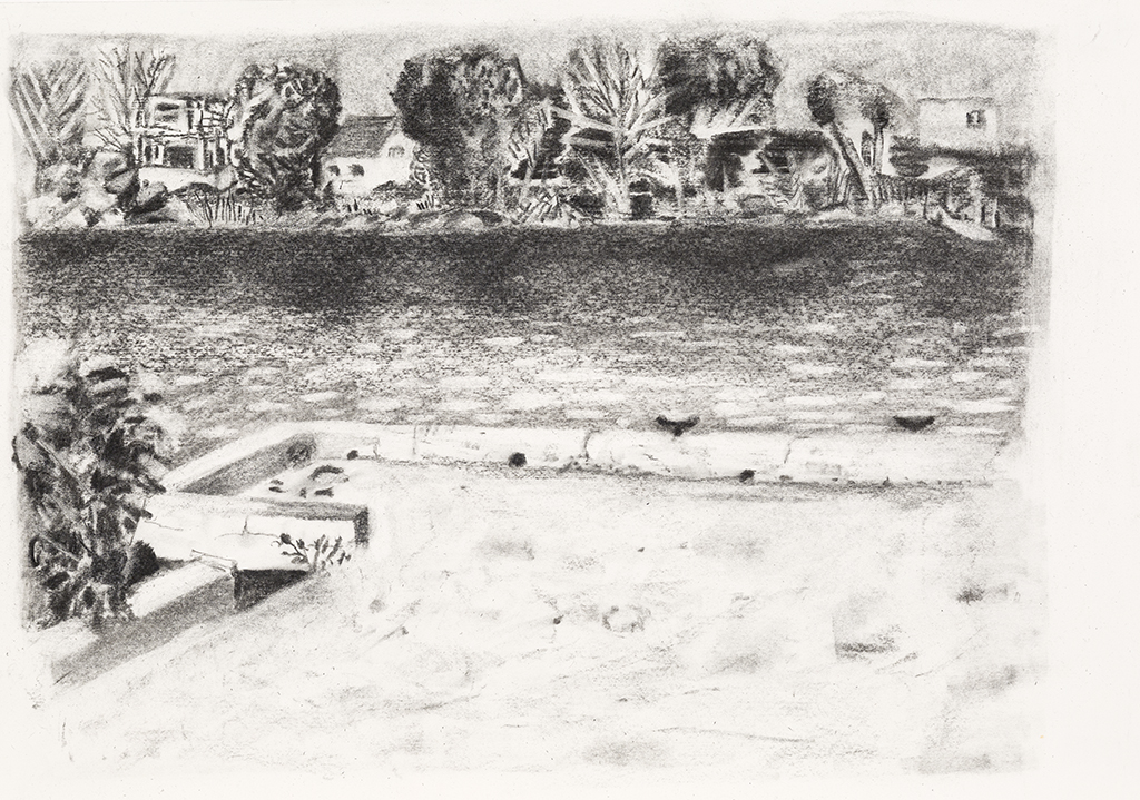 Richelieu river, charcoal on paper,15x21 inches,2014