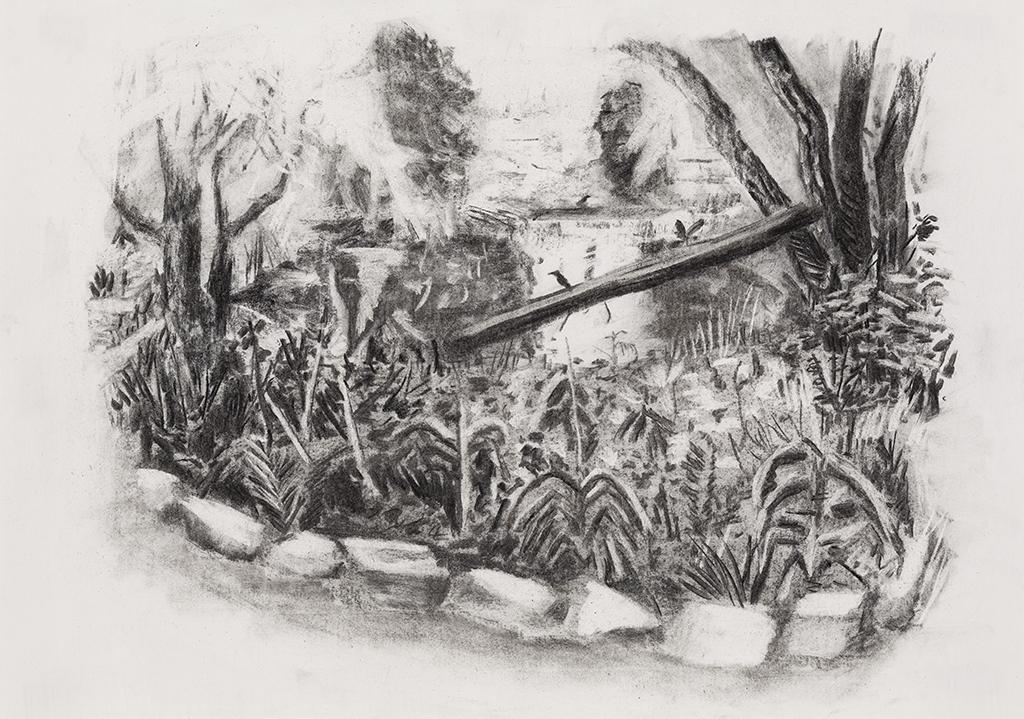 St-Philippe de La Prairie, charcoal on paper,15x21 inches,2014