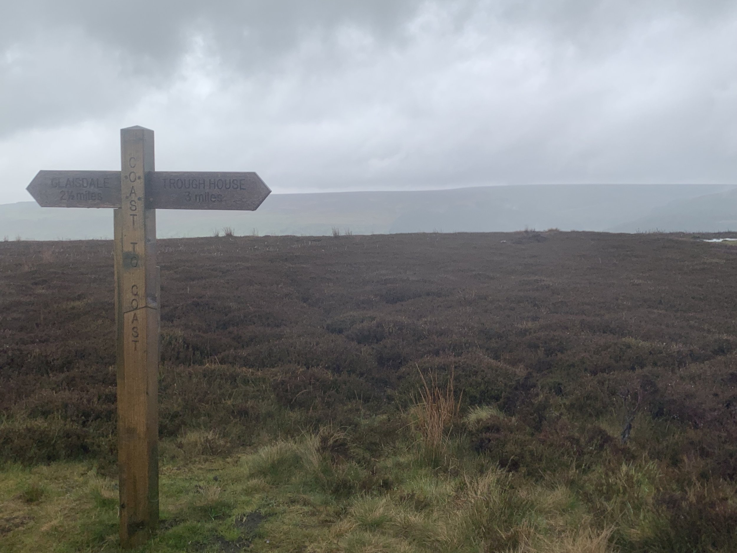 Rainy and windy Yorkshire Moors. photo by anne richardson