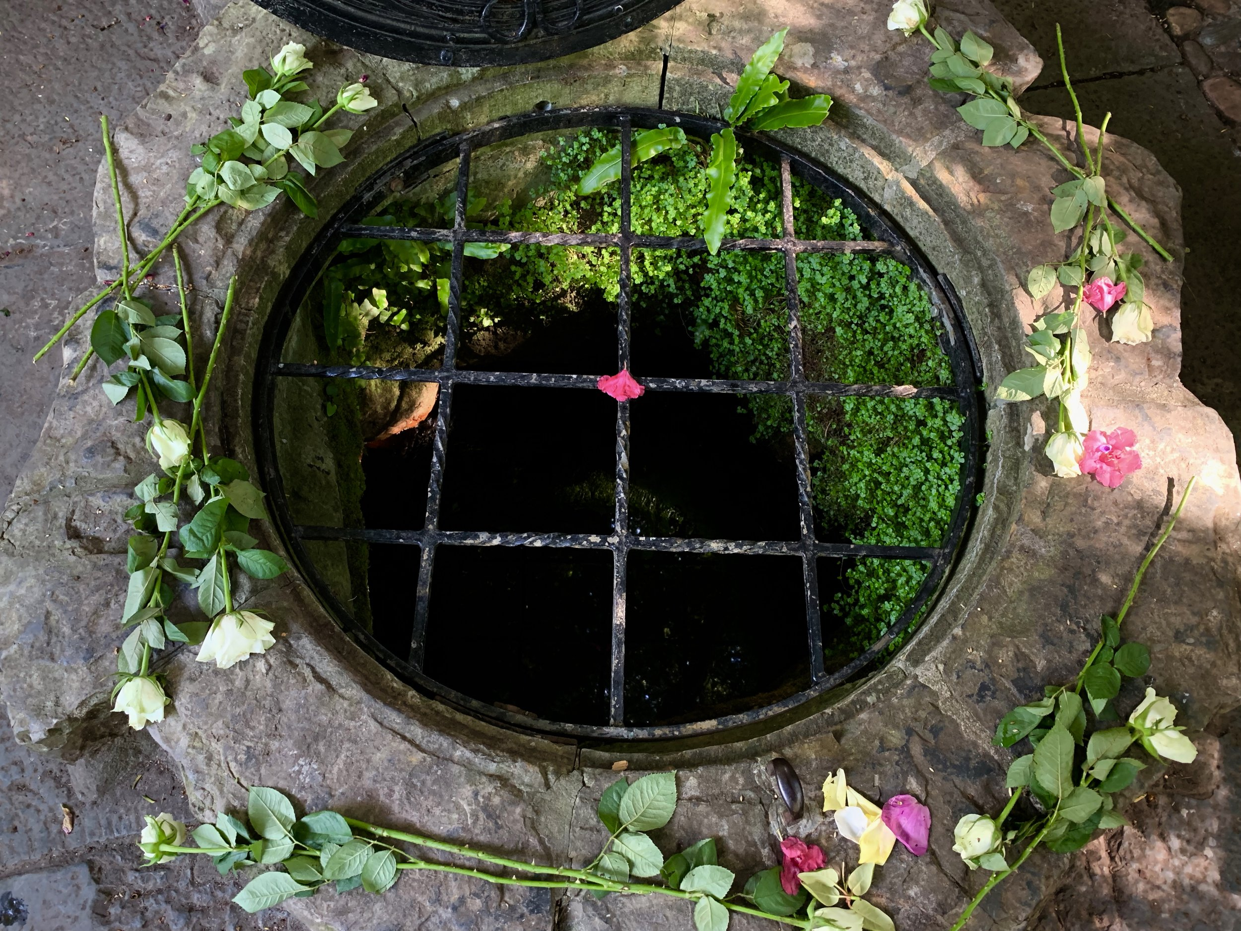 Chalice Well, Glastonbury, England. Photo by anne richardson.