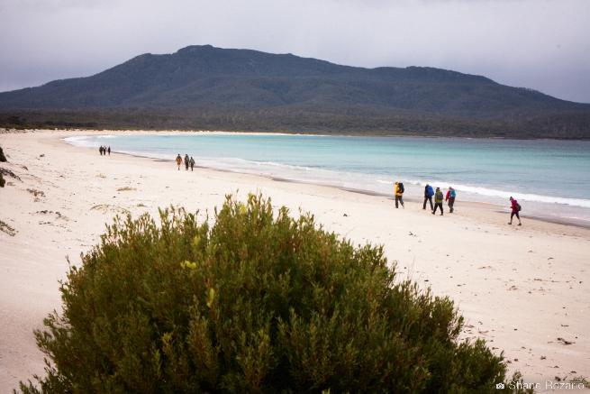 20120905-Primal FIt Maria Island 0408.jpg
