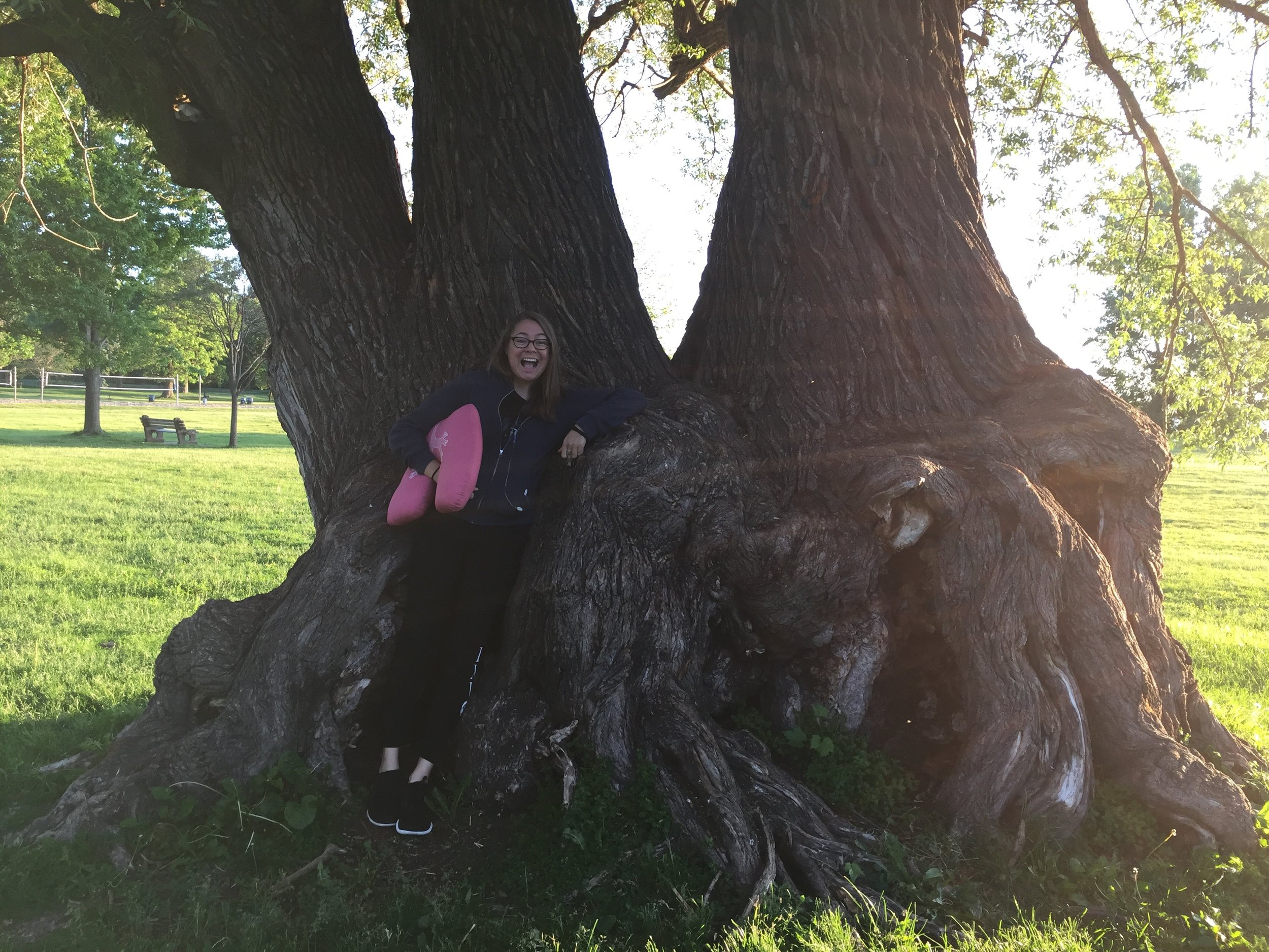 Rima was obsessed with this tree