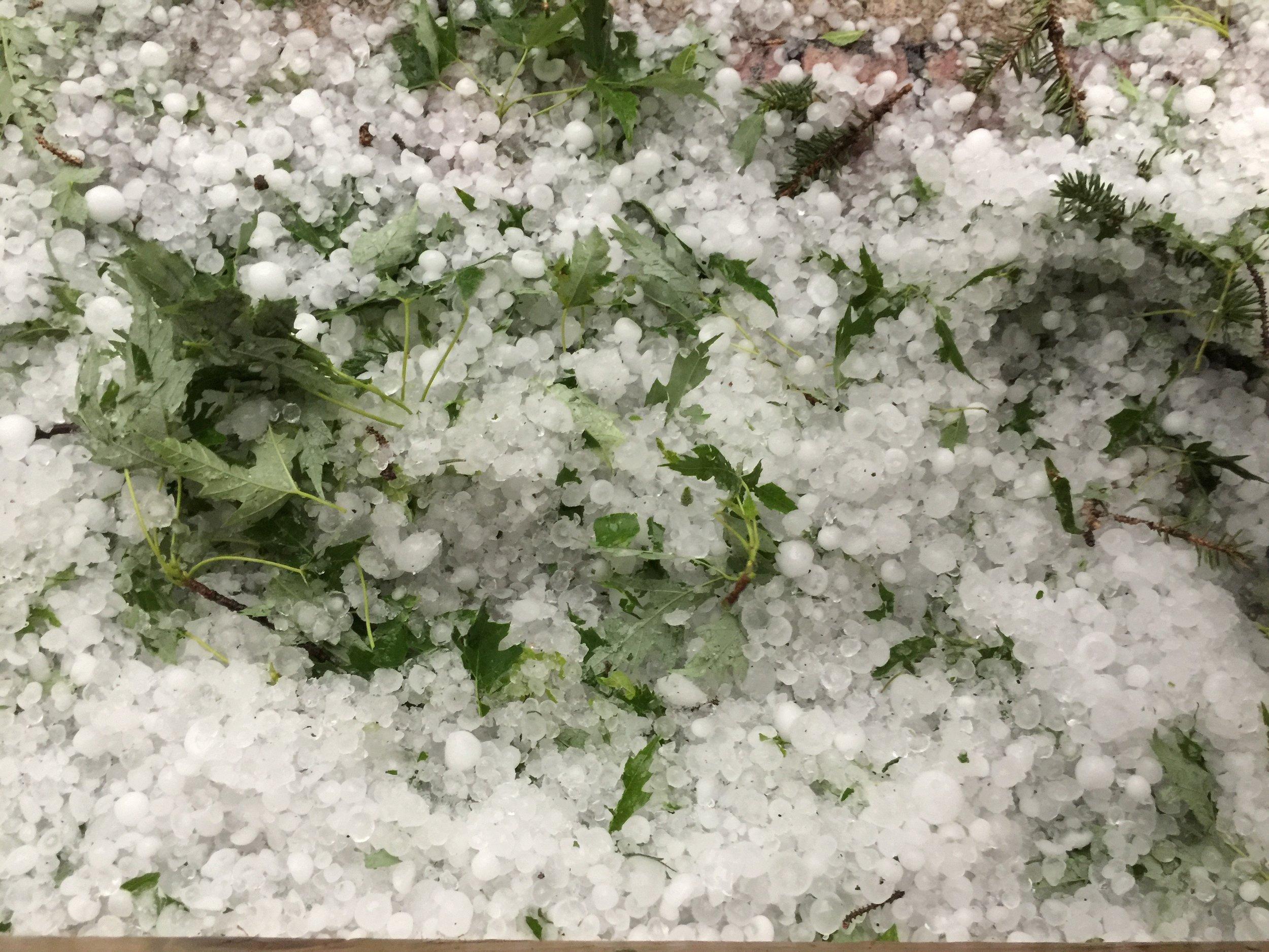 June hail