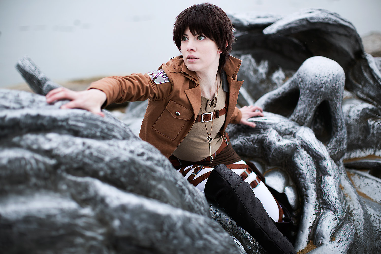 "Eren, ""Attack on Titan"""