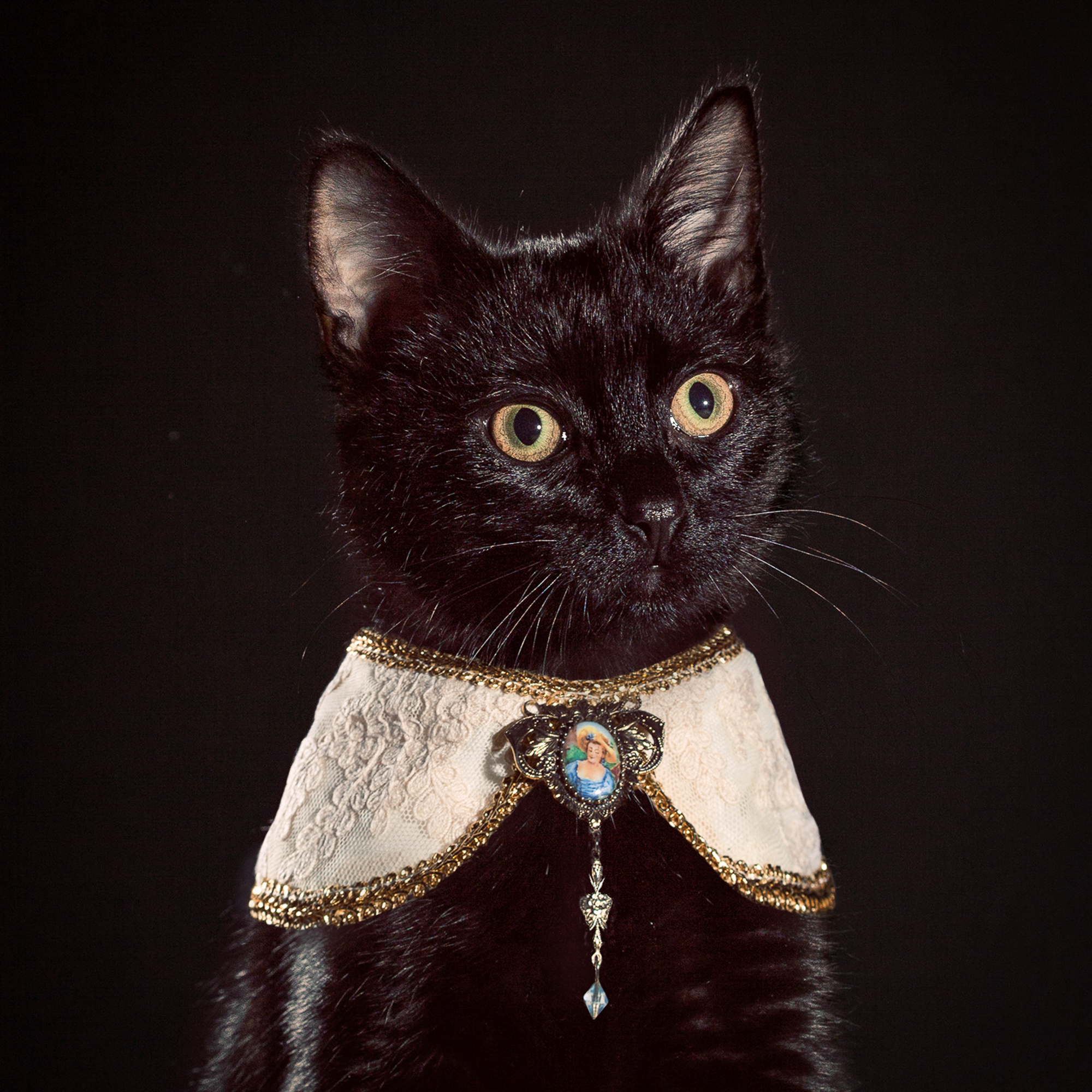 3_Holly_Andres_Elizabethan Cat Collars.jpg