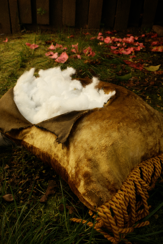pillow outside.jpg