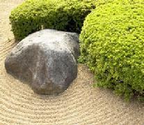 Garden zen.jpg