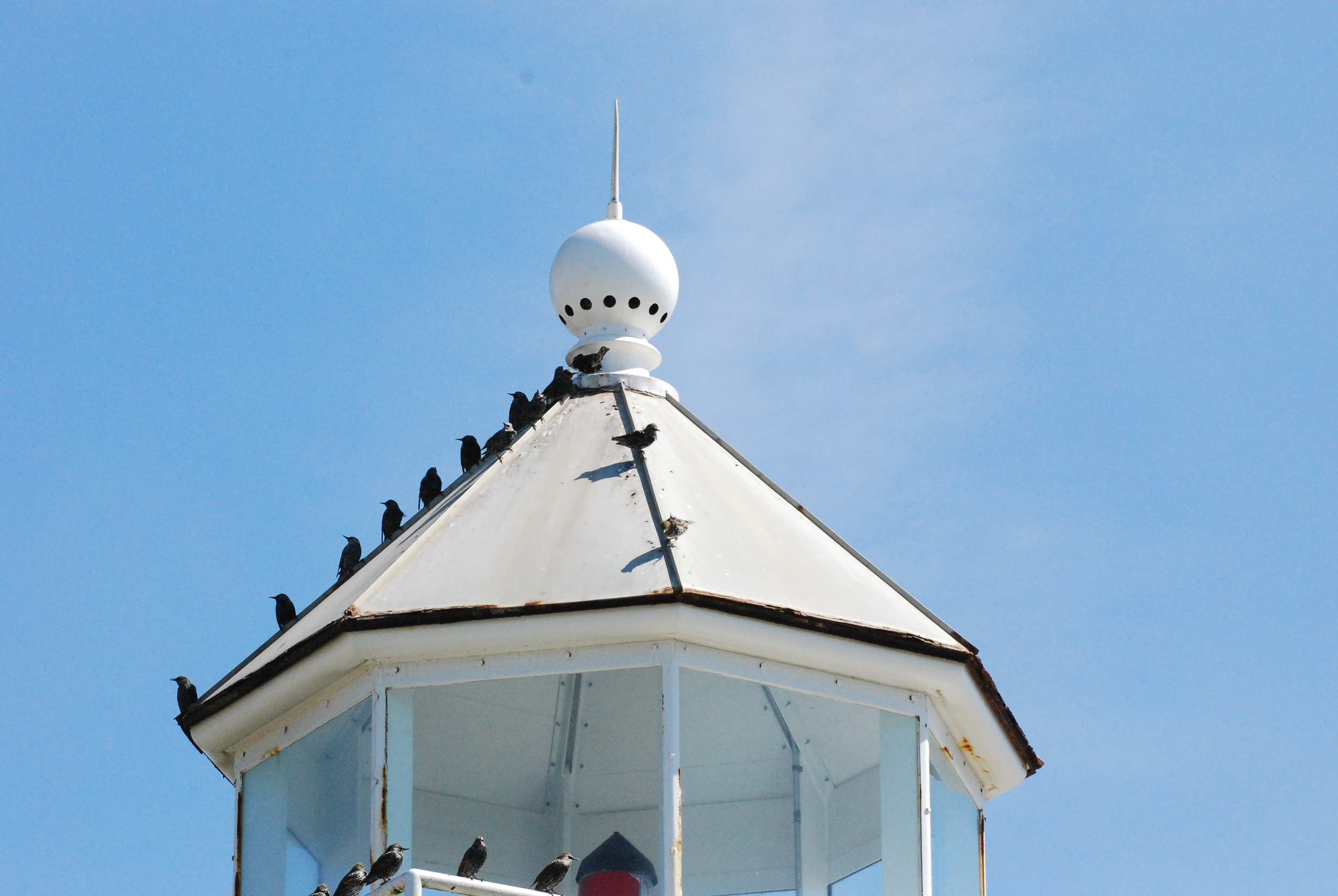Santa Cruz lighthouse 92208 174.JPG