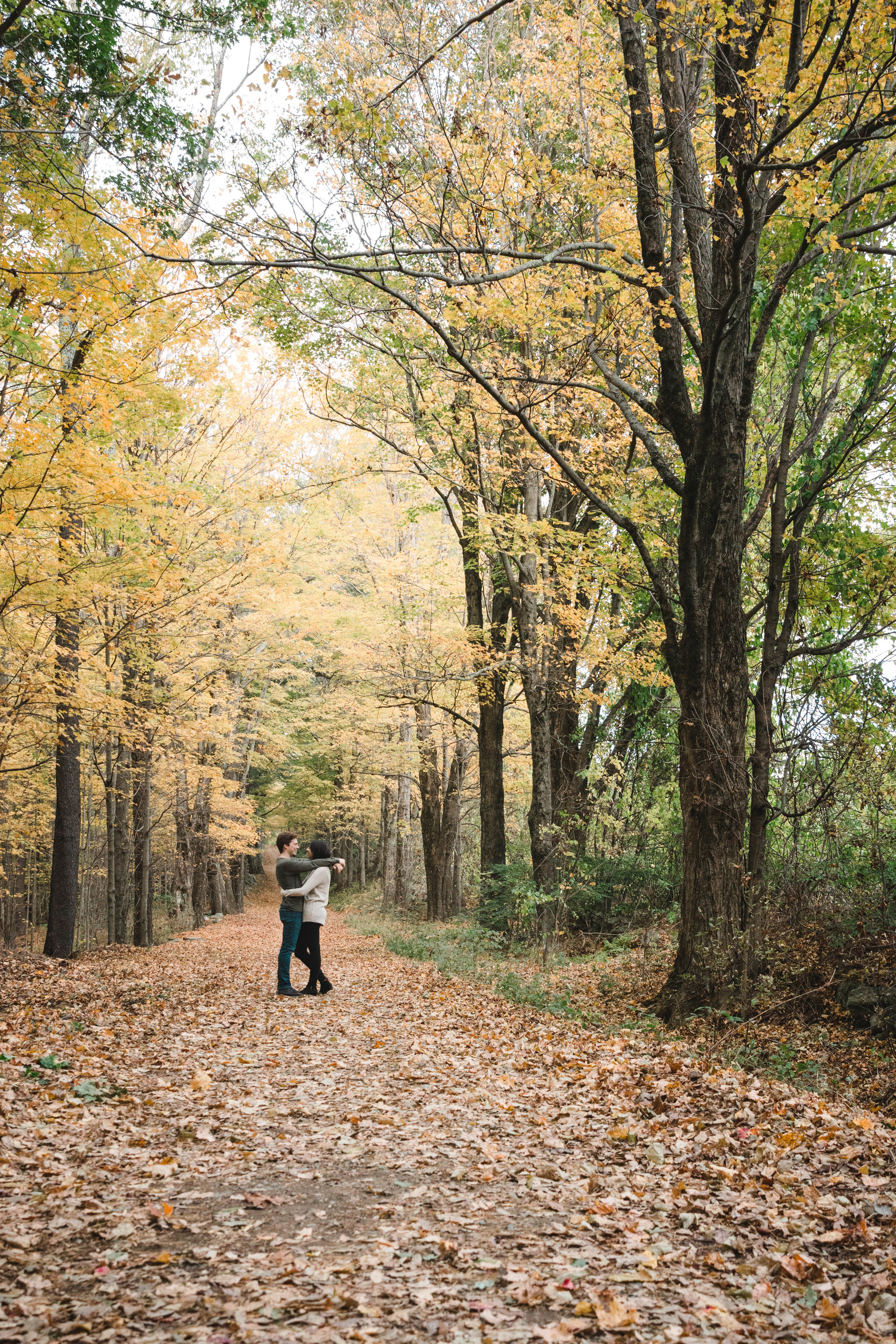 couple hugging in fall foliage tree lined pathway