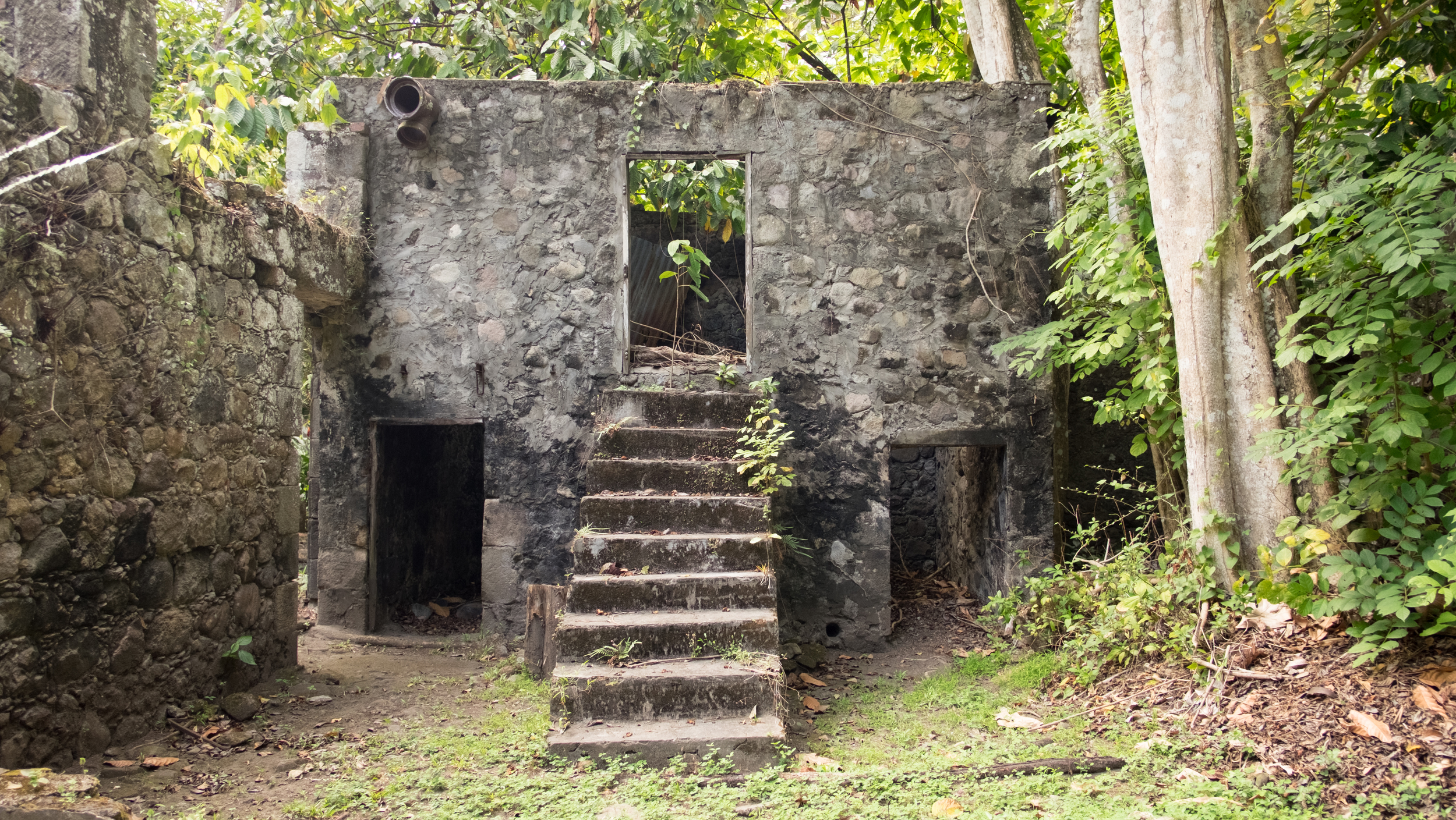 In the building on the left the horses or mules lived below and the slaves lived above up these stairs.