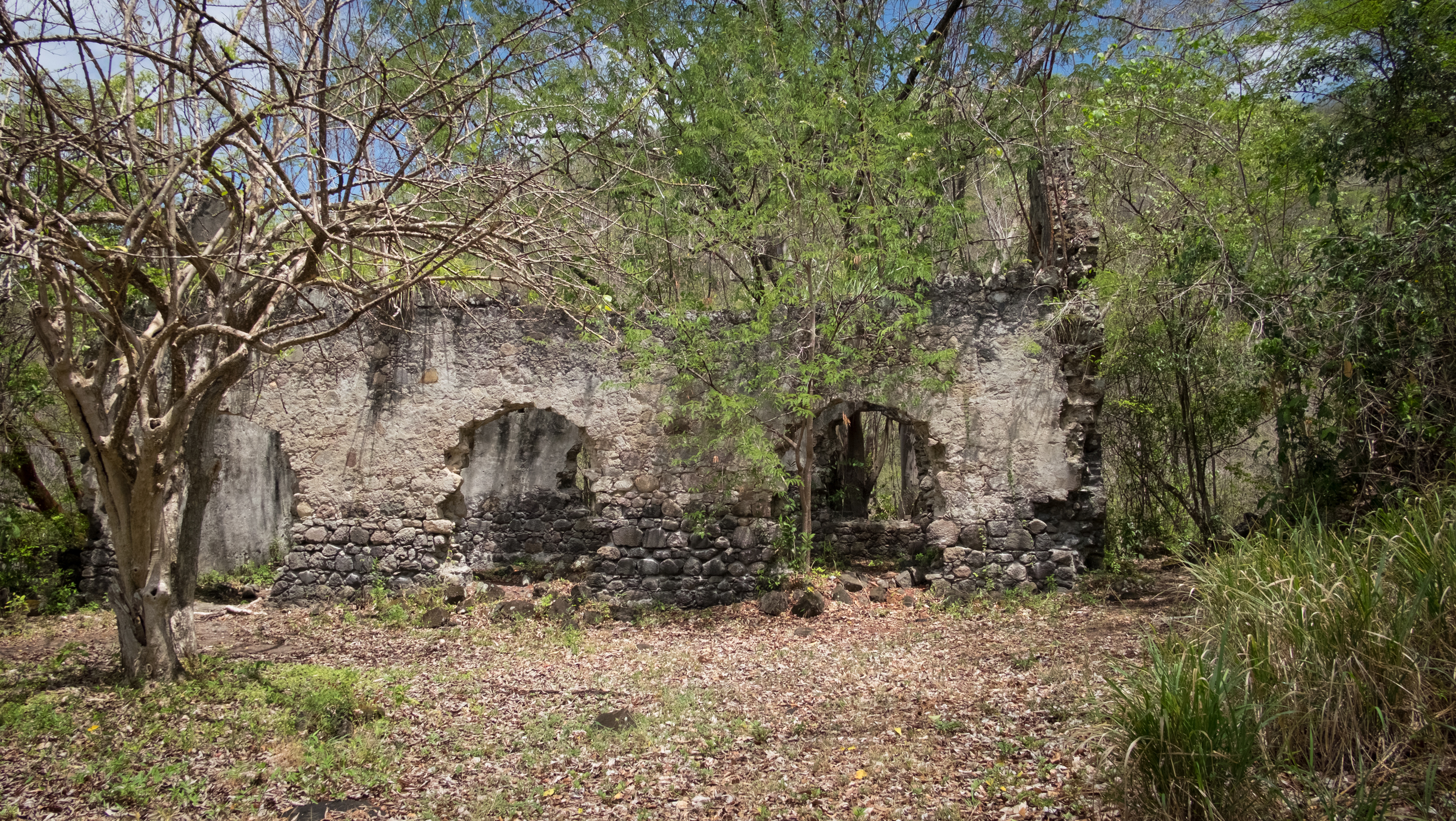 The climb up those ropes leads you to the old church and cemetery located above the plantation house.