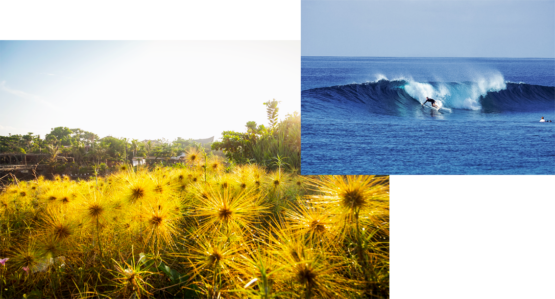 Bali-Indonesia-Maldives-Cokes-Surfing-AboutMe.png