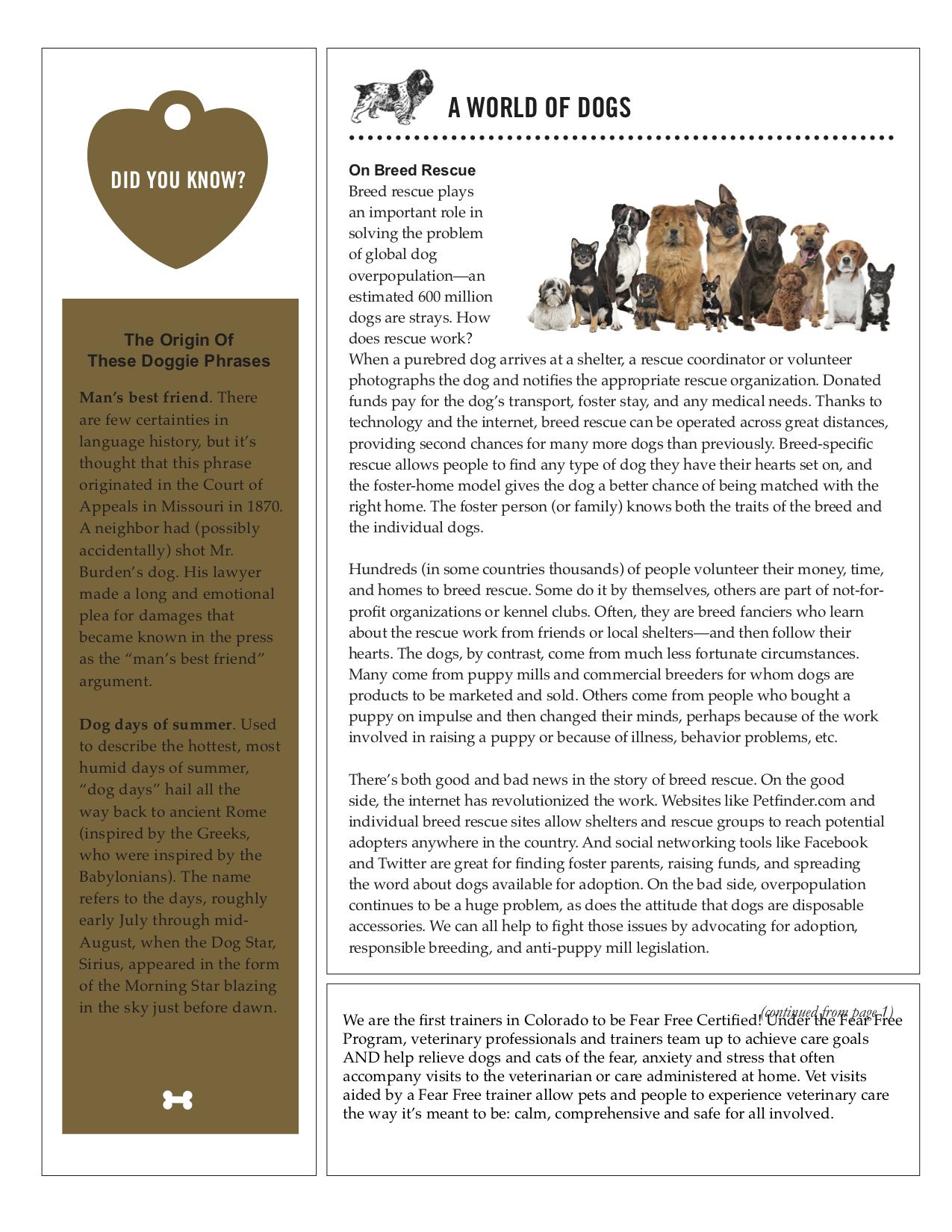 newsletter pg 2.jpg