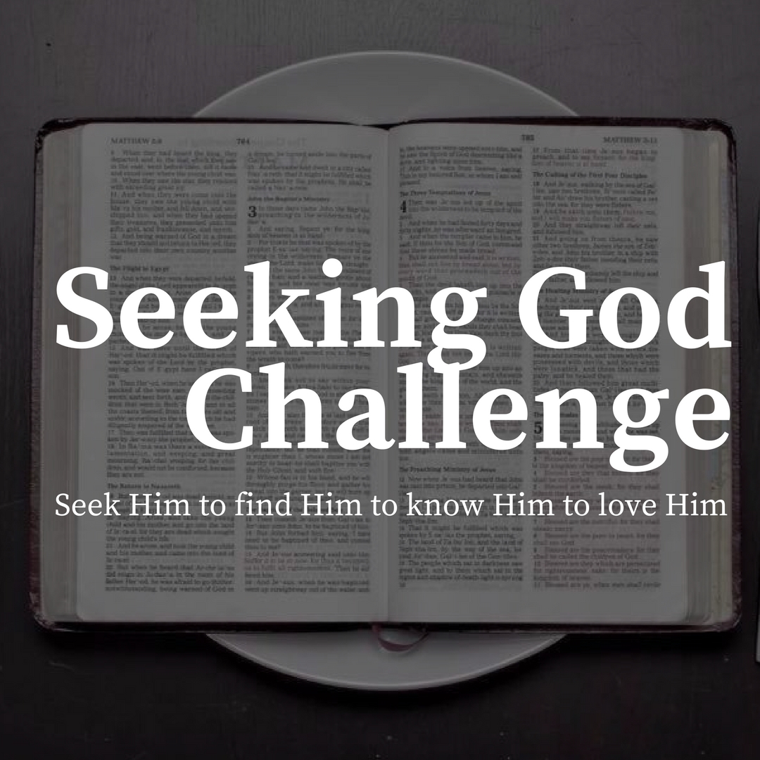 In this free challenge, you will get a devotional email for the next 30 days, helping you to seek God and develop a deeper relationship with Him.