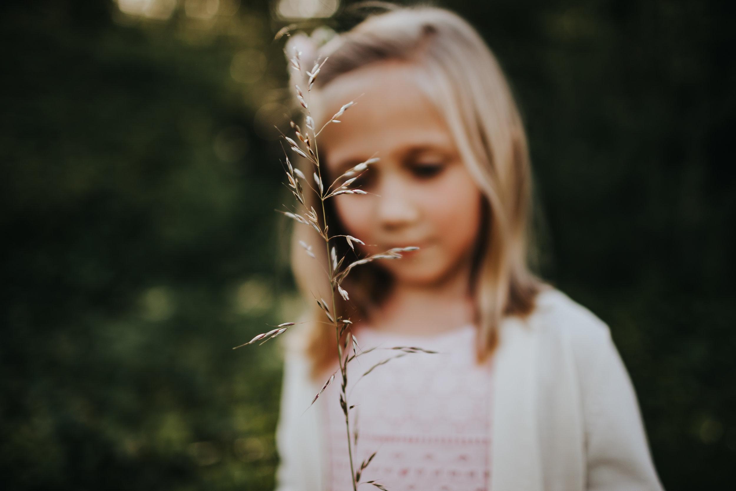 linenko photography tacoma family photographer children