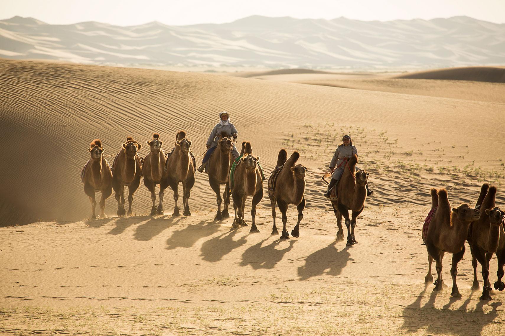 Gobi Desert. Photo courtesy of Ira Block Photography