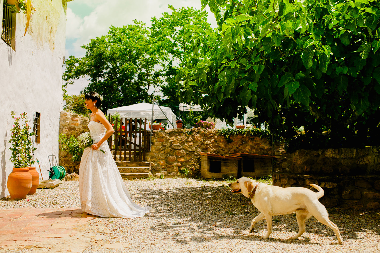 barcelona-wedding-photographer0452.jpg