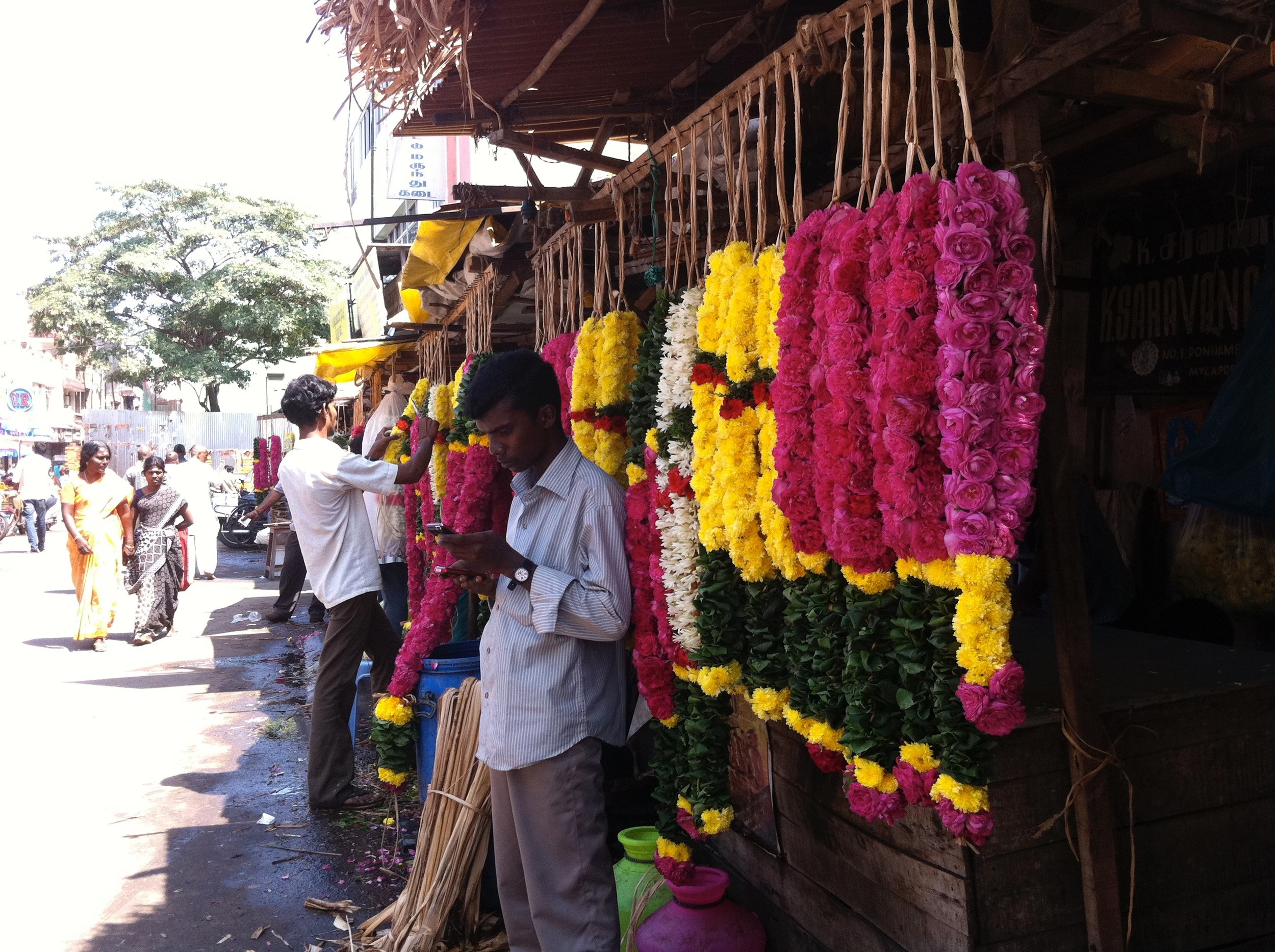 Chennai 2012 - devant le temple de Mylapore