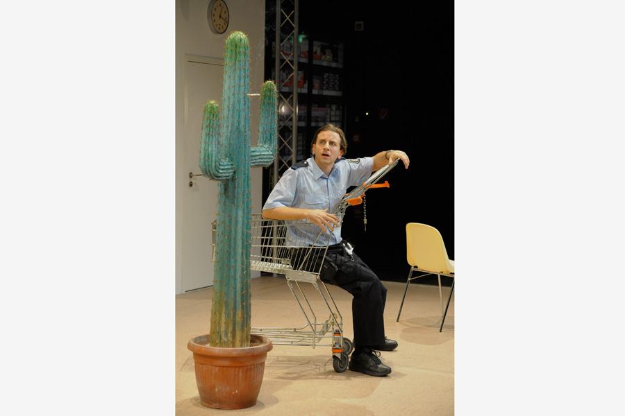Der-Kaktus-Beatrix-Schwarzbach-II.jpg