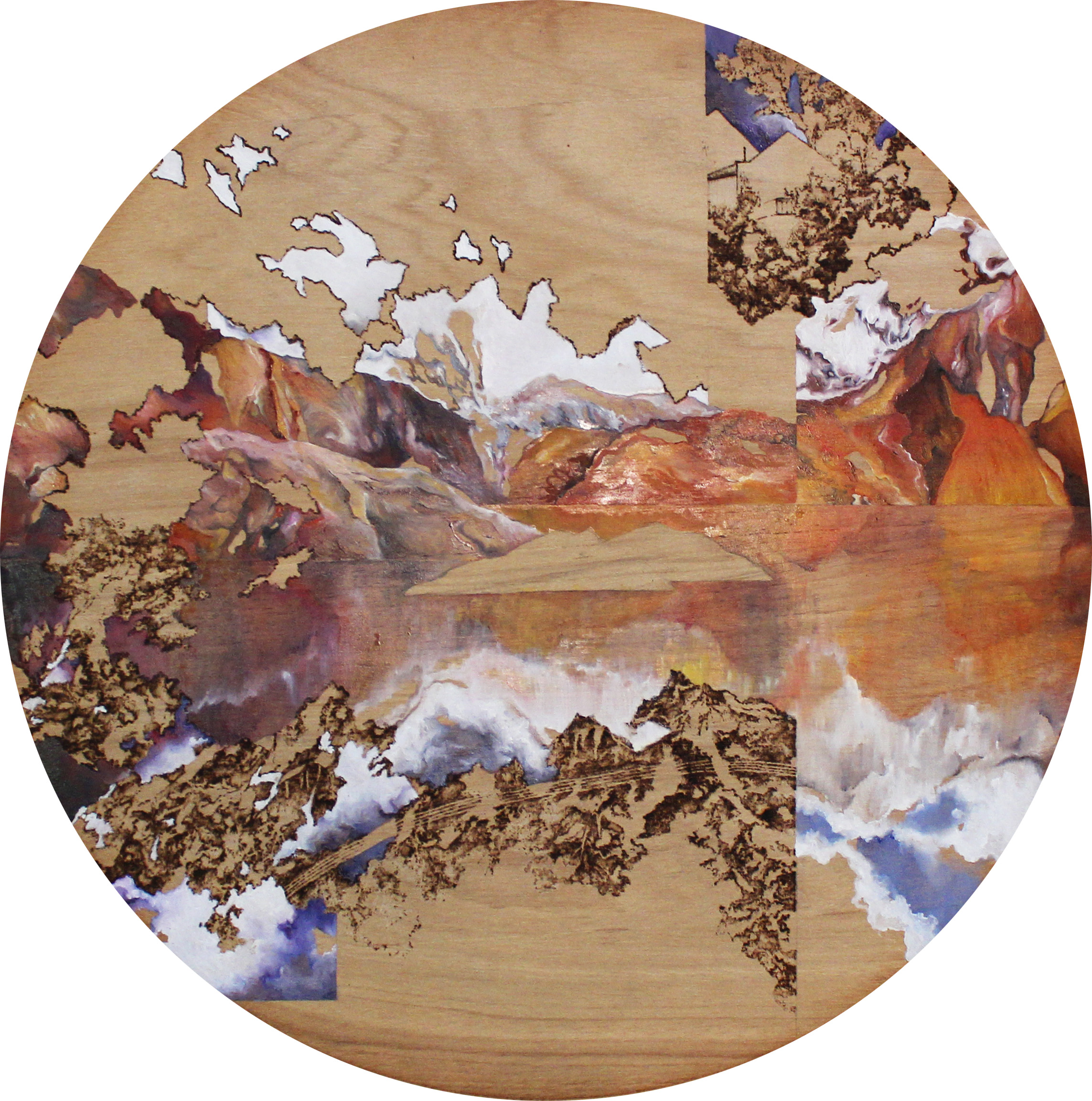 Fictitious Reflection, 2016 Oil and Pyrography on Wood.