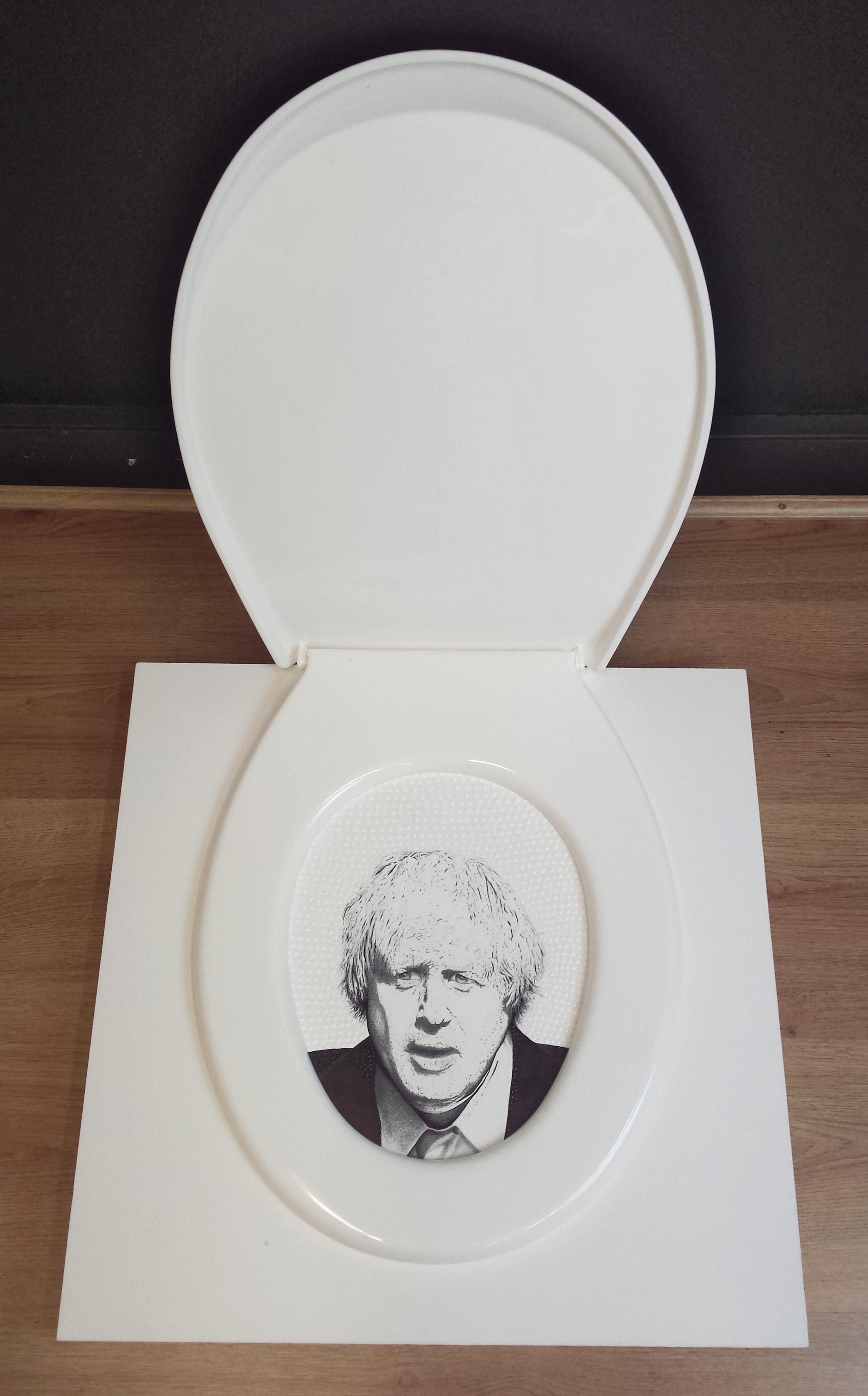 Flush This Out, Mixed media, ink, pencil on wood panel, framed with a toilet seat.