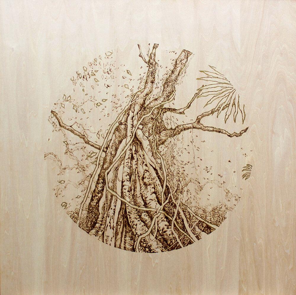 Rise, 2019  Pyrography and liquid leaf on wood   60x60cm (framed)