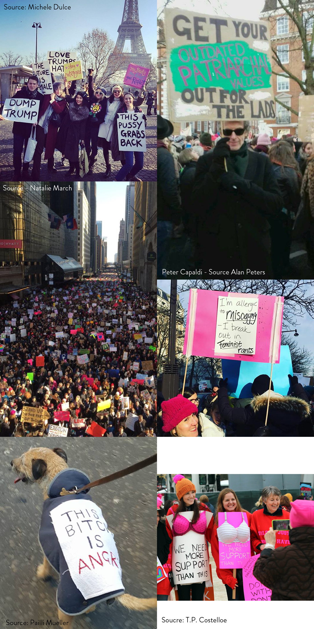 women's marches signs