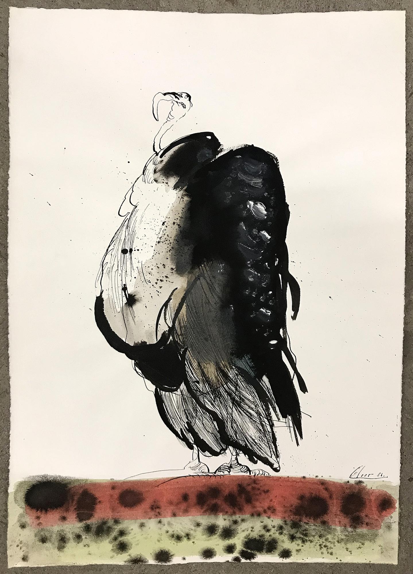 Geier, 1986, Tusche auf Büttenpapier, 32 x 45 cm, ohne Rahmen