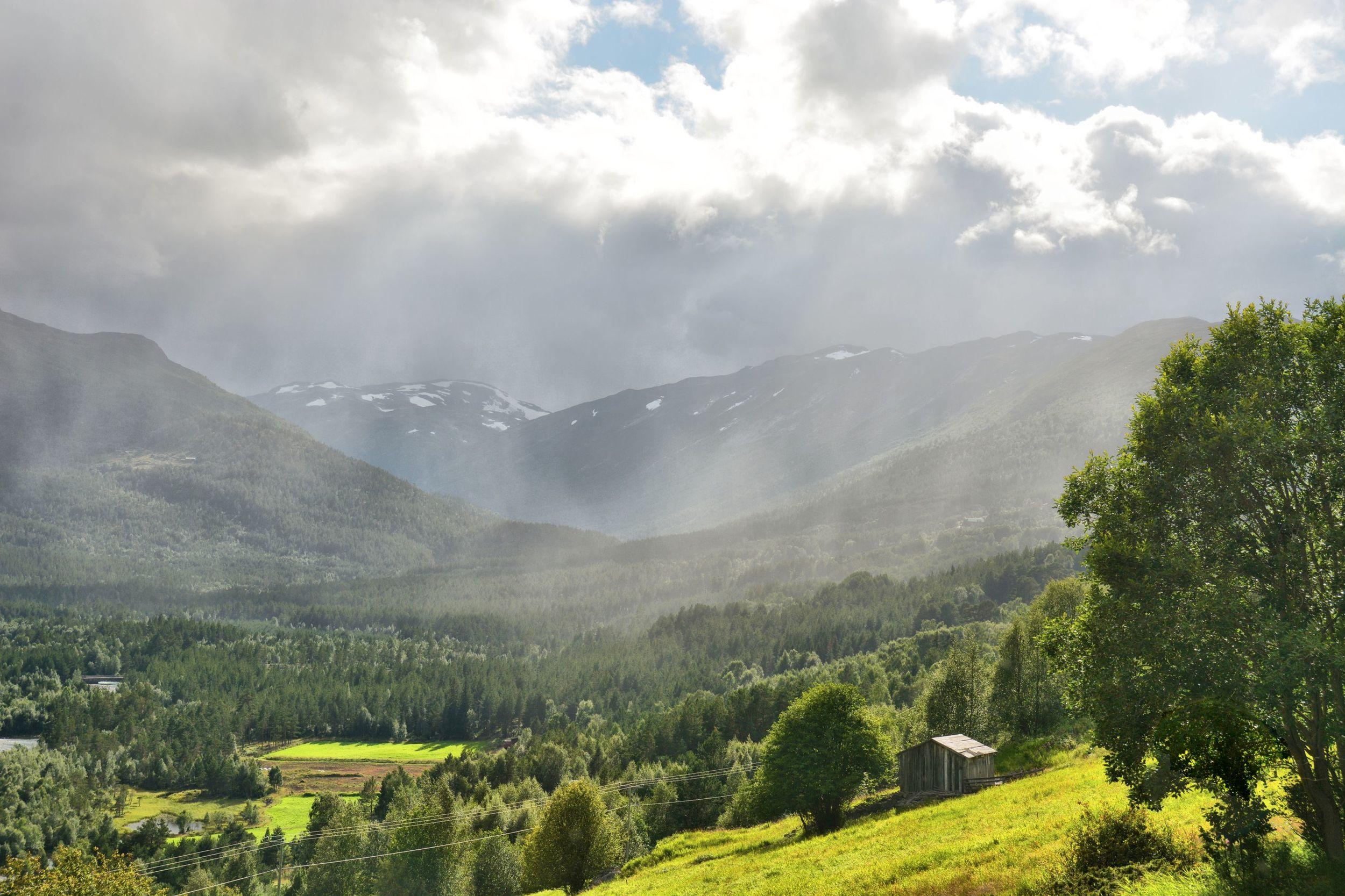 Rain in Mysubyttdalen
