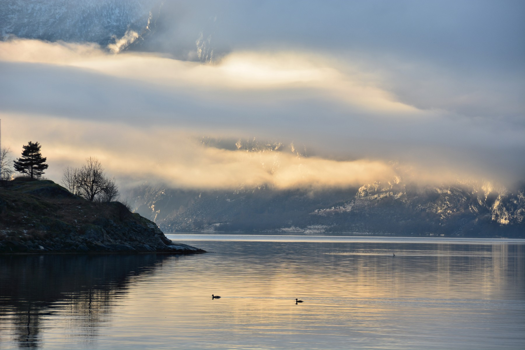 Golden Aurlandsfjord