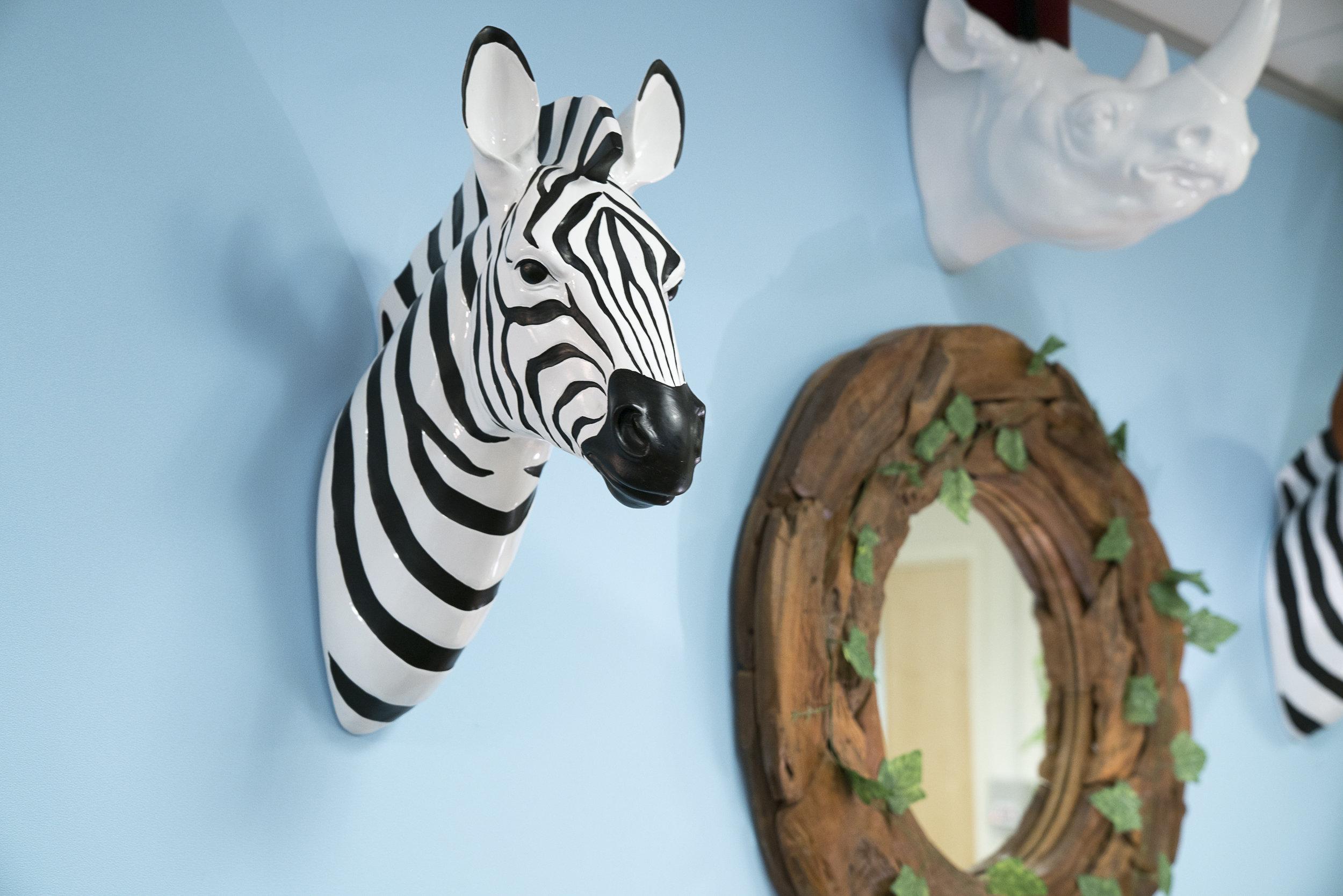 zebra head.JPG