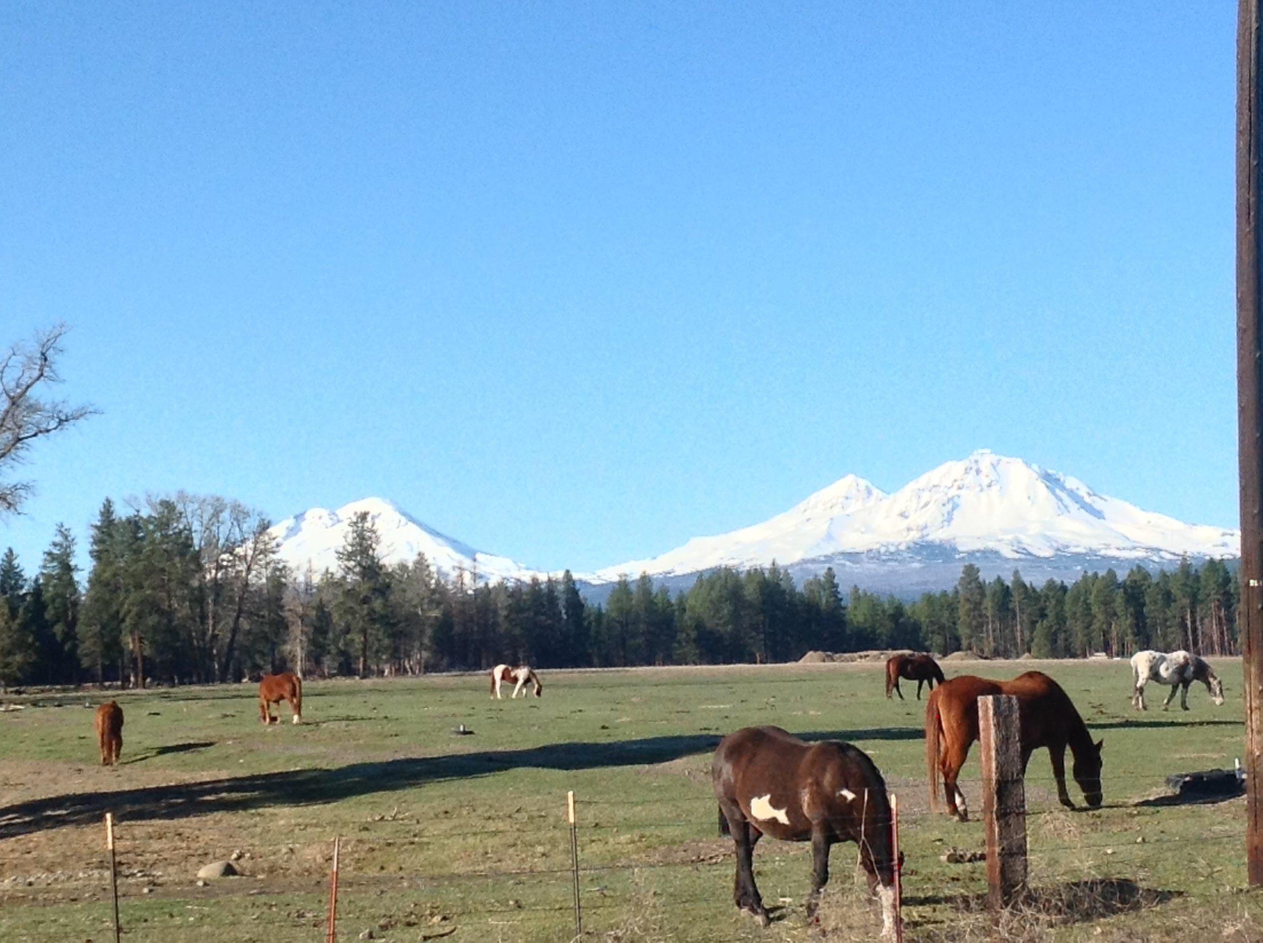 Mount Washington, Oregon