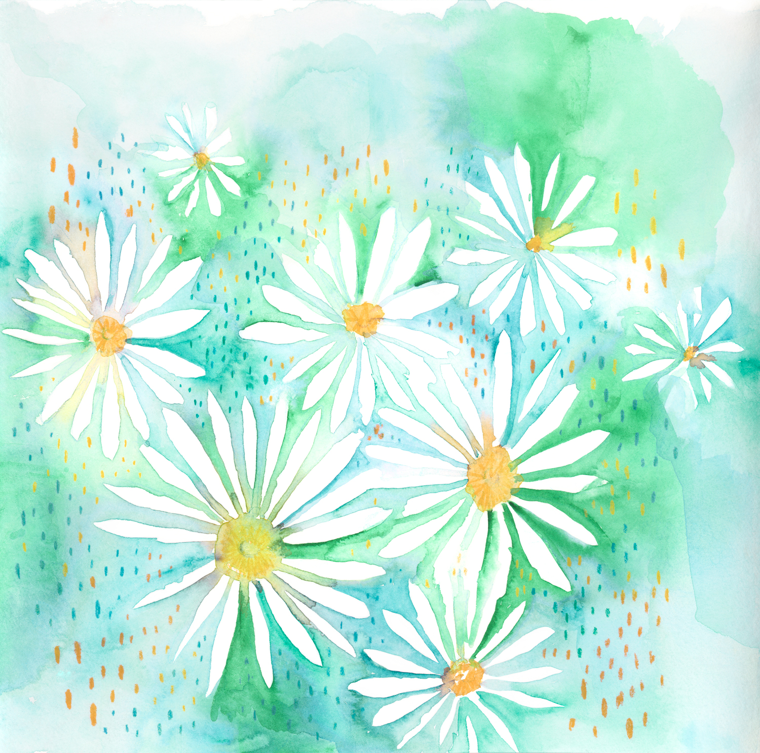 WEBSITE_Daisies.jpg