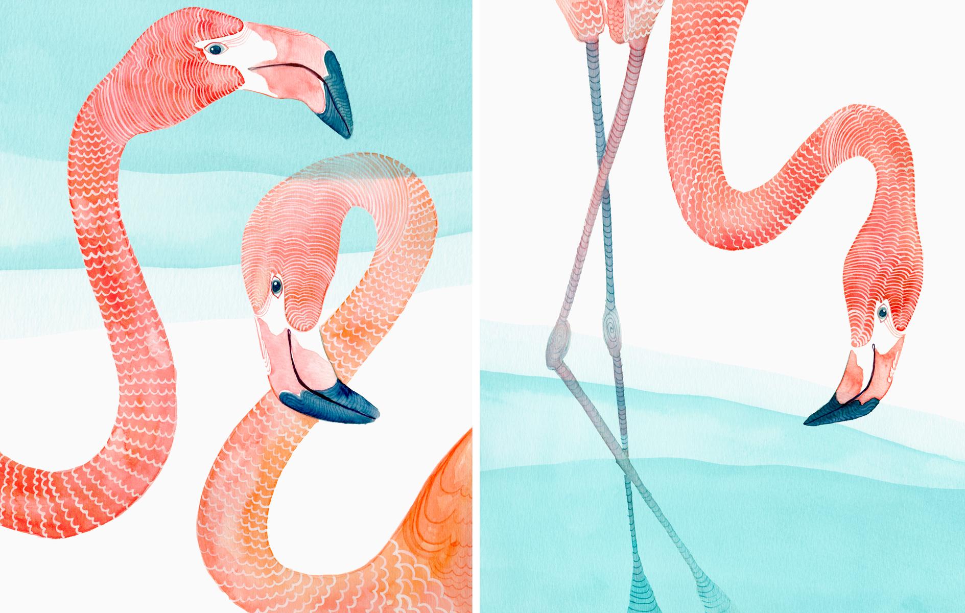 Website_Flamingos.jpg