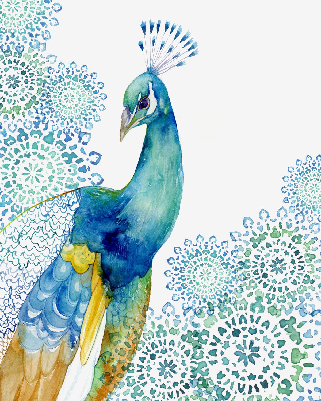 Website_Peacock_garden.jpg