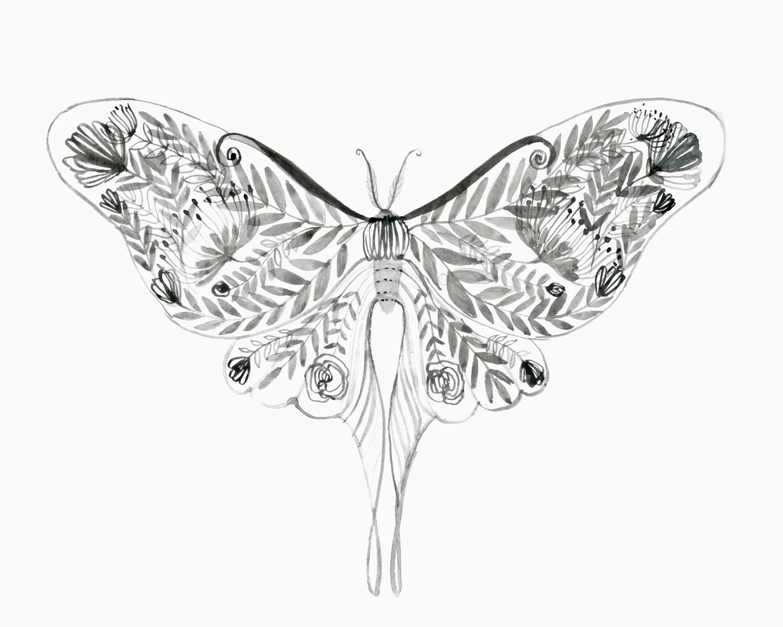 Website_luna_moth_floral.jpg