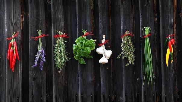 PITTA FOOD PROGRAM(E-GUIDE) -