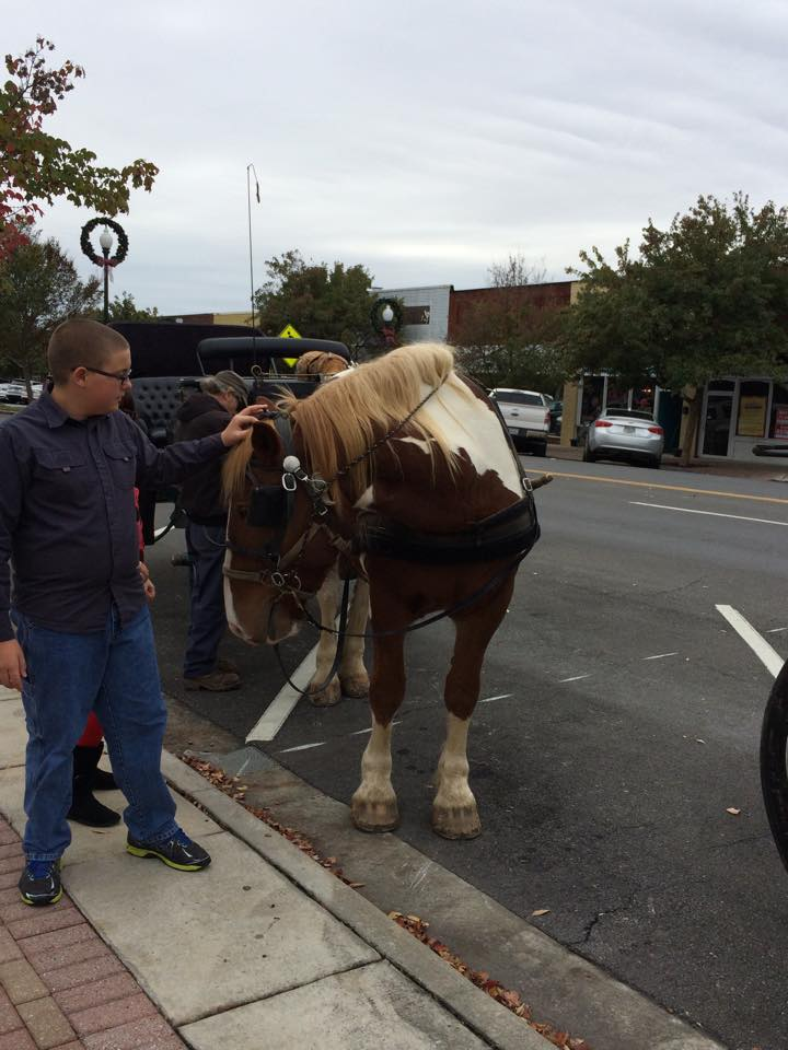 Downtown Dalton Holiday Open House Carriage Rides
