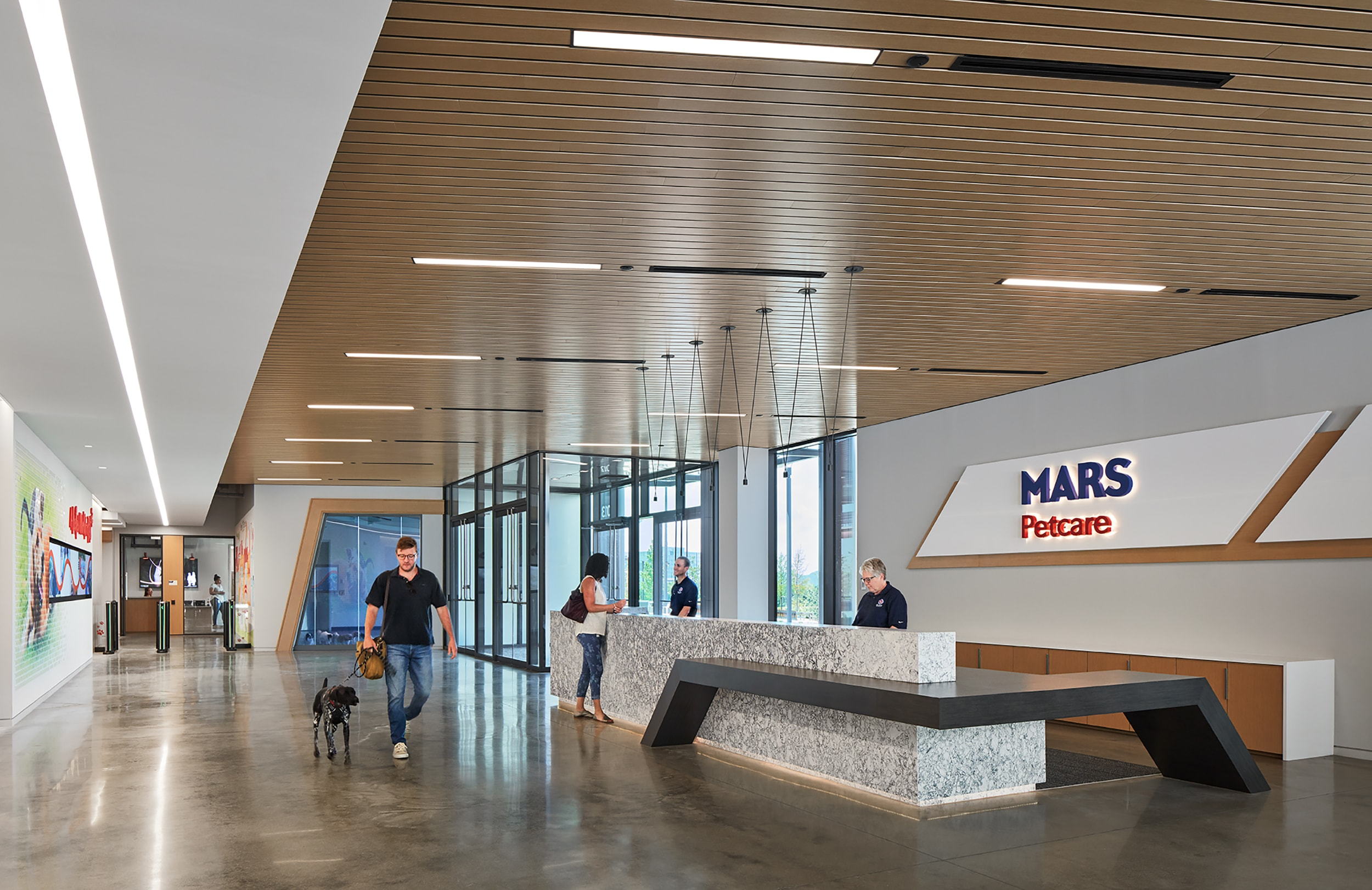 mars petcare 12 steve hall © hall + merrick photographers.jpg