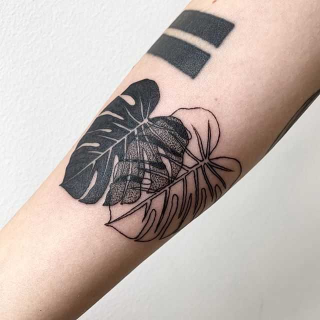 Monstera for Sydney 🖤 healed 📺 from my earlier flash in vid