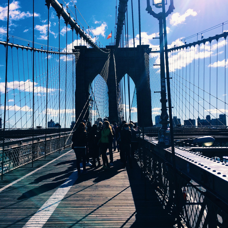 Beginner's Guide to New York 5.jpg