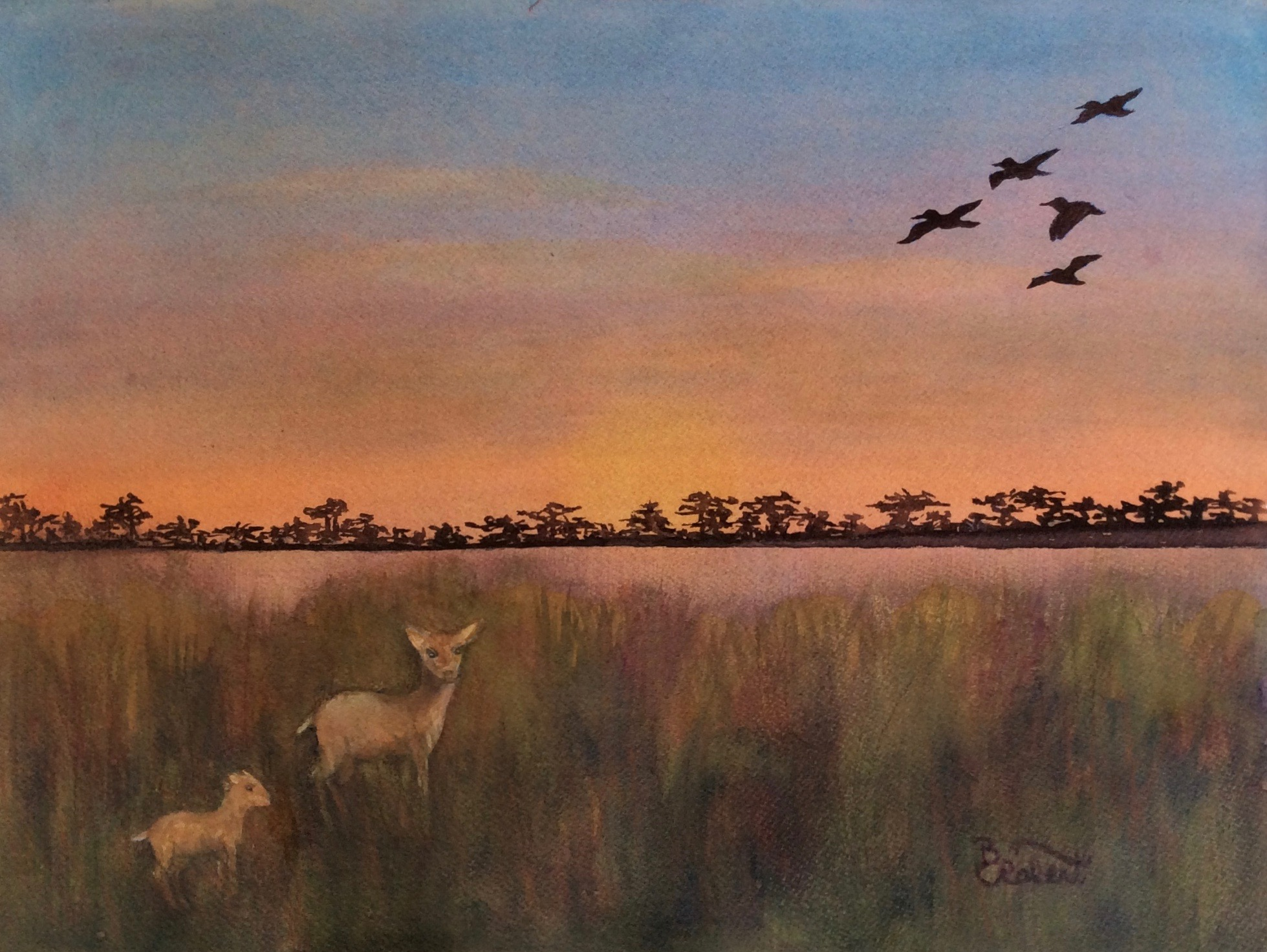 GOLDEN MARSH VISITORS,