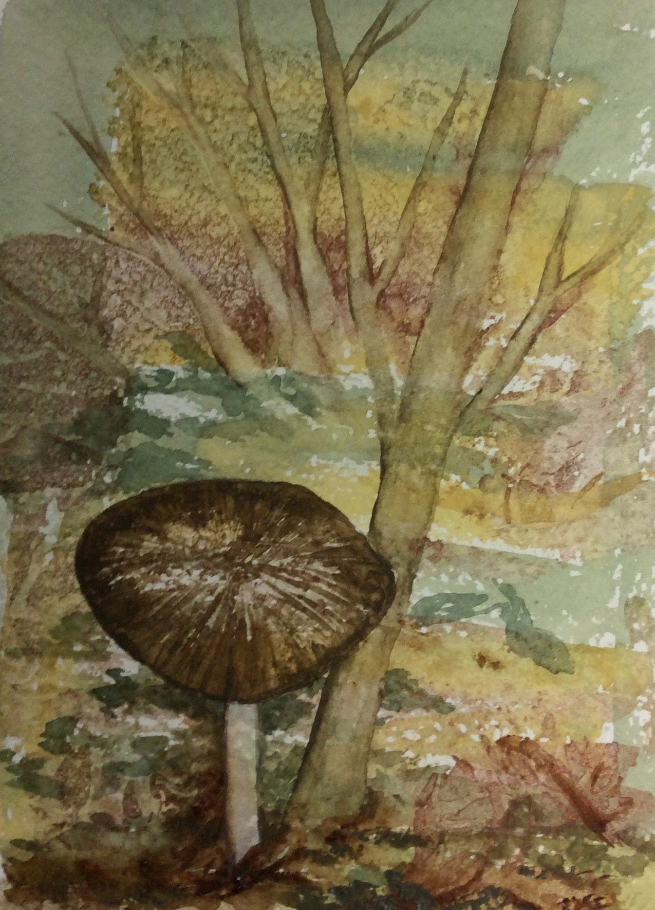 Here is the Solo Mushroom piece I did with the same palette, less water and patted down plastic wrap for the textured base. These are both 5x7
