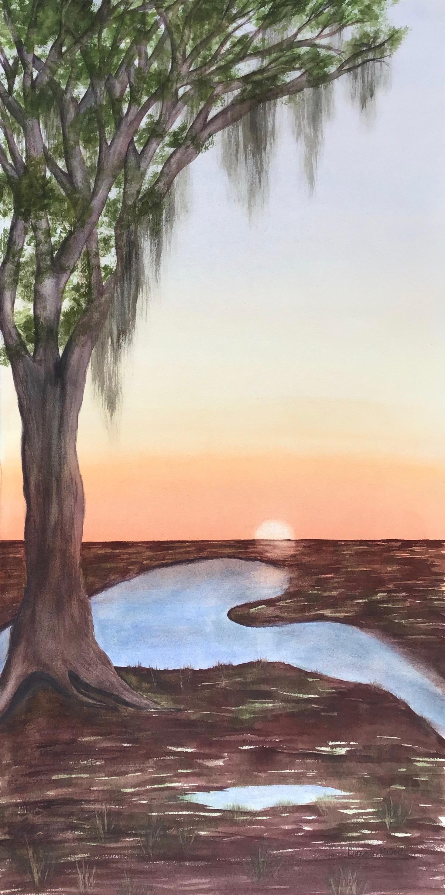 C59 Marsh sunset commission.jpg
