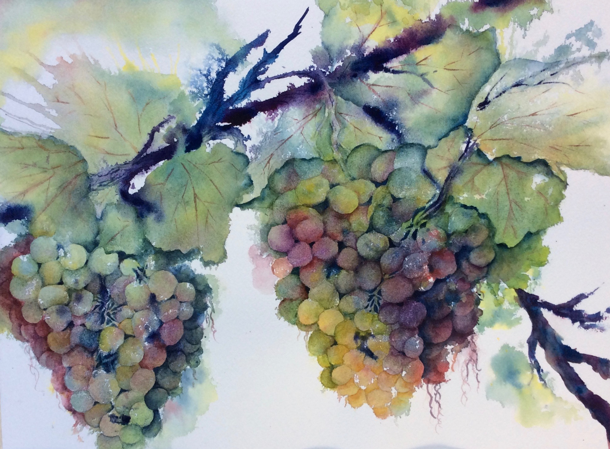 Grapes, Giclee reproduction