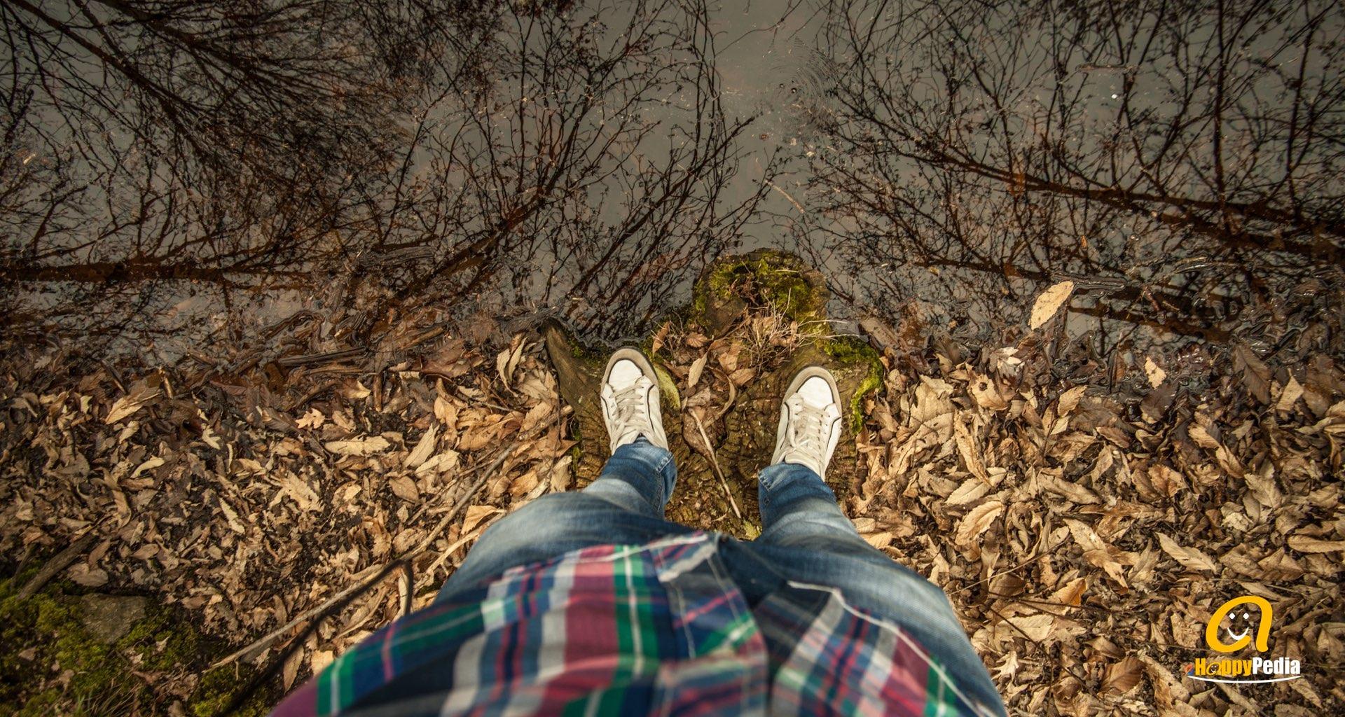 blog - feed man woman forest autumn.jpeg