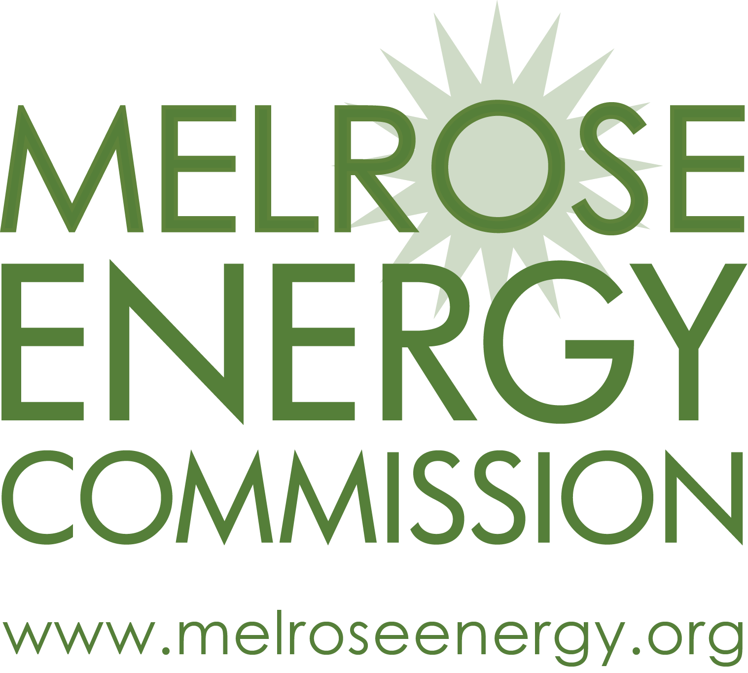 MEC Logo with web.png