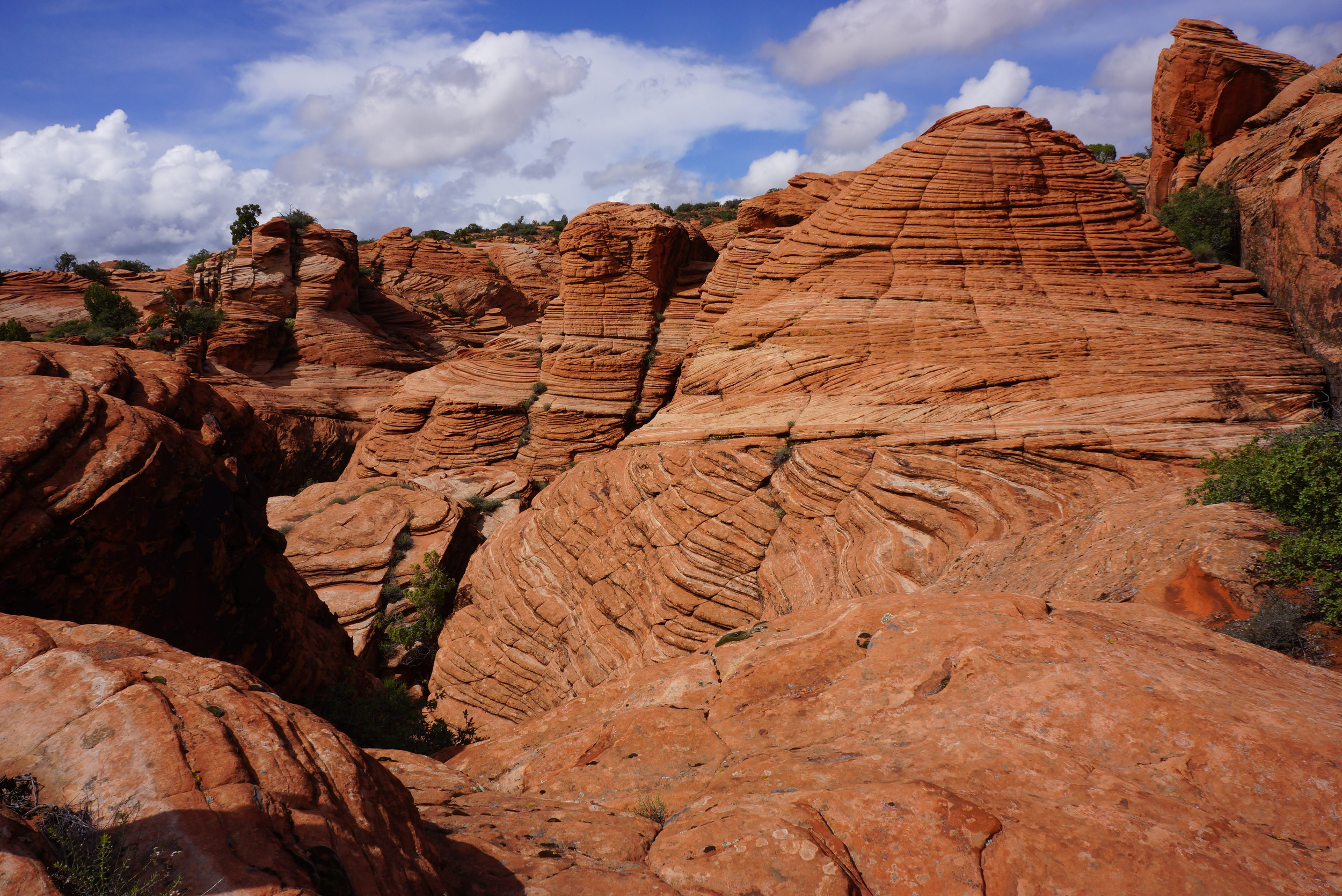 Hidden Gems: State Parks